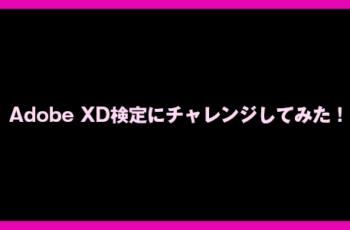 Adobe XD検定にチャレンジしてみた!